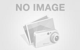 ГАЗ 33106 (Валдай)